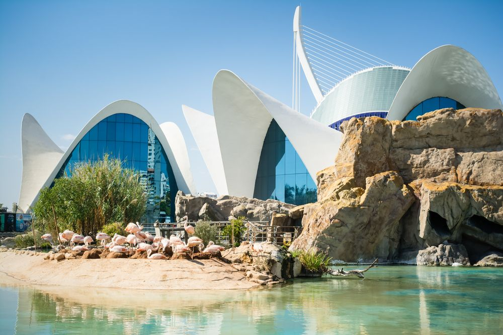 Why we love Valencia